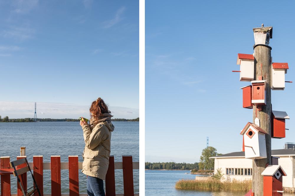 Regatta, Finlande